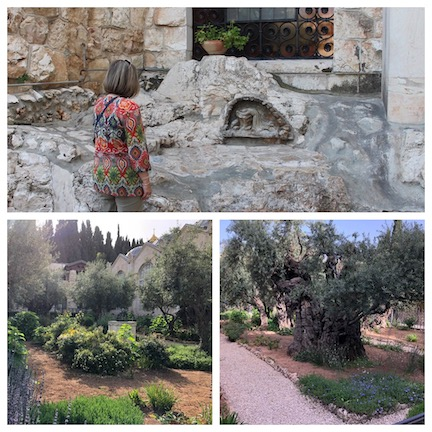 WCNLJUN19 HOLY LAND PIC 2 DAY ONE GARDEN OF GETHSEMANE copy